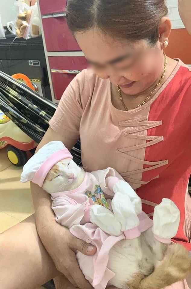 Bị giục giã sớm lấy chồng để mẹ có cháu ngoại bồng bế, cô con gái đối phó bằng cách đem con về cho bà chăm, nhìn danh tính đứa trẻ dân mạng không khỏi bất ngờ!-4