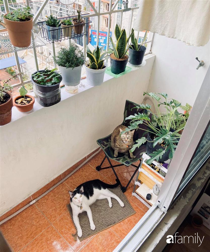 Nghỉ ở nhà dài ngày, chàng trai Sài Gòn biến ban công 4m² nhàm chán thành khu vườn xanh mướt đủ loại cây-5