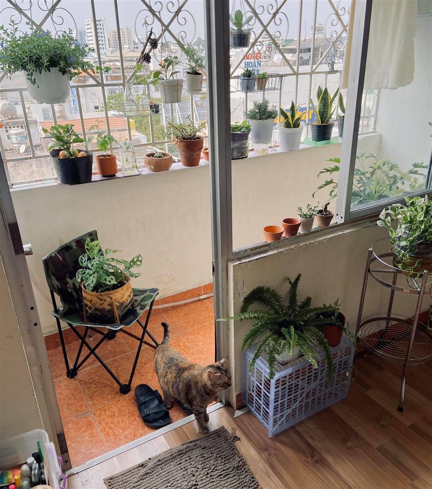 Nghỉ ở nhà dài ngày, chàng trai Sài Gòn biến ban công 4m² nhàm chán thành khu vườn xanh mướt đủ loại cây-7