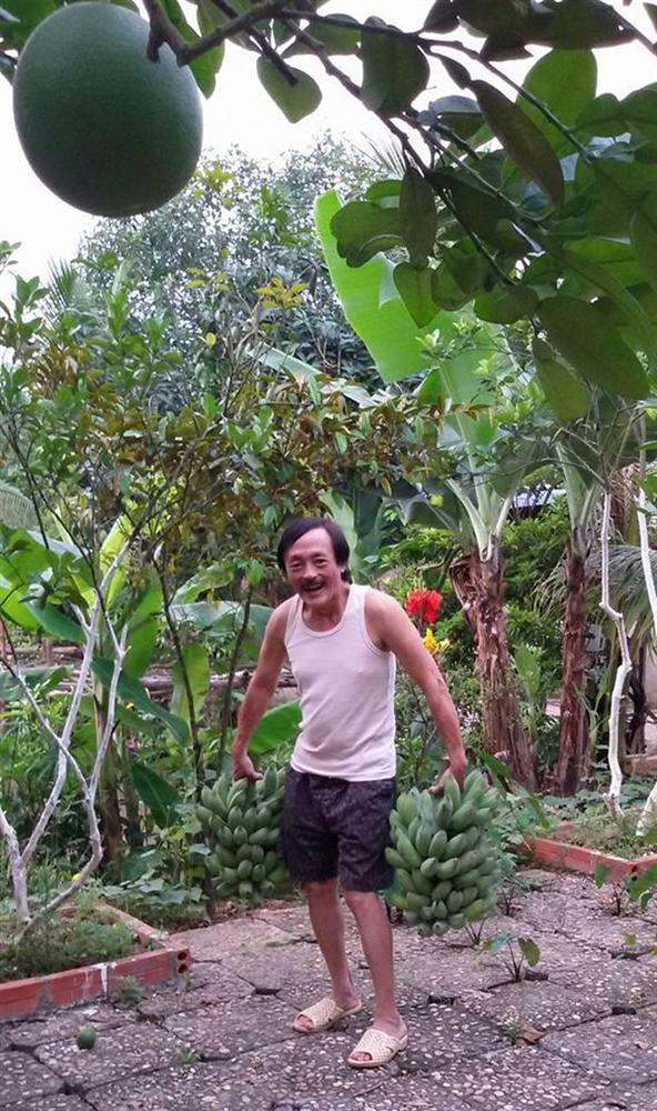 Nhà vườn 10.000m2 của nghệ sĩ Giang còi ngập hoa và trái cây-5