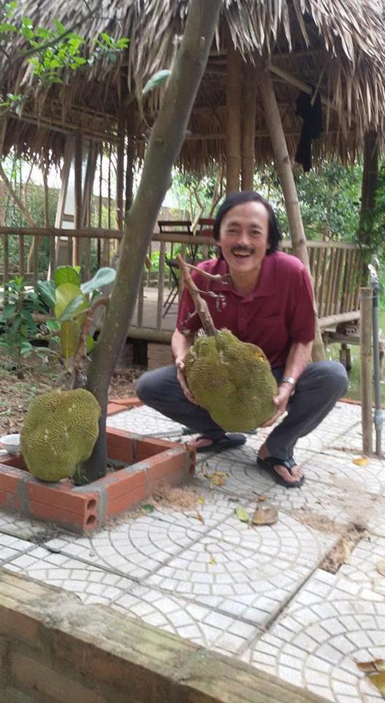 Nhà vườn 10.000m2 của nghệ sĩ Giang còi ngập hoa và trái cây-6