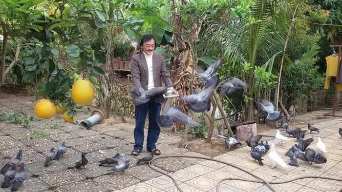 Nhà vườn 10.000m2 của nghệ sĩ Giang còi ngập hoa và trái cây-10