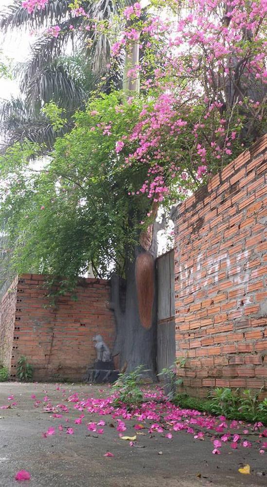 Nhà vườn 10.000m2 của nghệ sĩ Giang còi ngập hoa và trái cây-13