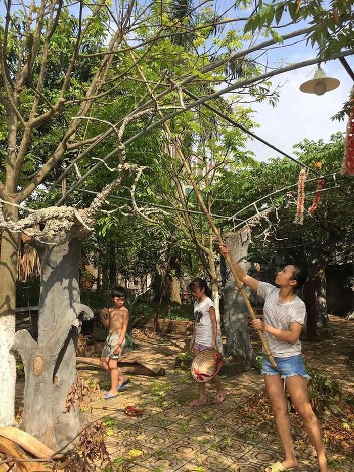 Nhà vườn 10.000m2 của nghệ sĩ Giang còi ngập hoa và trái cây-23