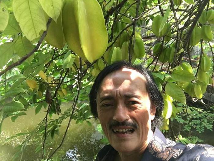 Nhà vườn 10.000m2 của nghệ sĩ Giang còi ngập hoa và trái cây-27