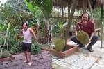 Showbiz đóng băng, Minh Luân bỏ phố về quê cải tạo nhà vườn rộng 3.000m2-10