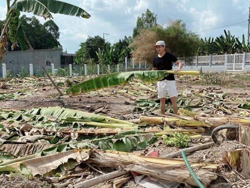Showbiz đóng băng, Minh Luân bỏ phố về quê cải tạo nhà vườn rộng 3.000m2-1