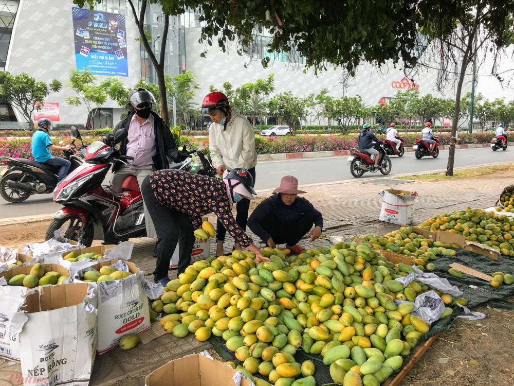 Xoài đổ đống bán đầy đường phố, giá chỉ 10.000 đồng/kg-4