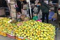 Xoài đổ đống bán đầy đường phố, giá chỉ 10.000 đồng/kg