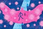 Vì sao dơi' - 'siêu' vật chủ mang nhiều virus gây bệnh mà vẫn sống khỏe?