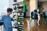 Hé lộ 1 số góc trong căn hộ tiền tỉ của ca sĩ Ngô Kiến Huy