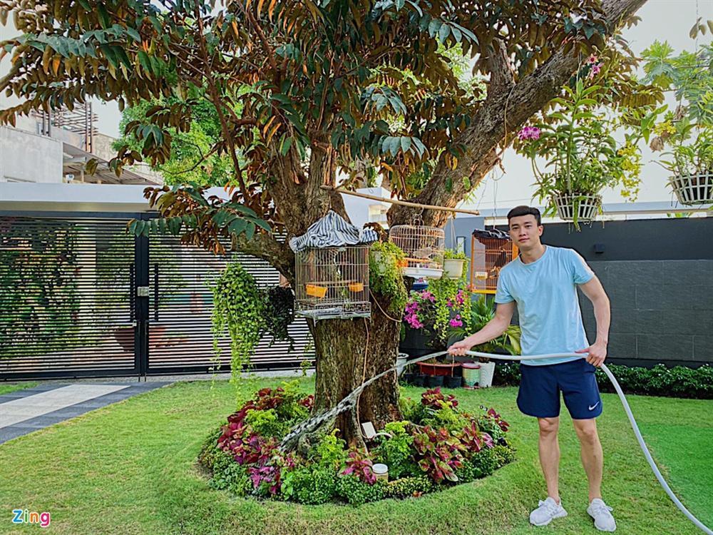 Quốc Trường chăm sóc vườn cây cổ thụ trong biệt thự 700 m2-3