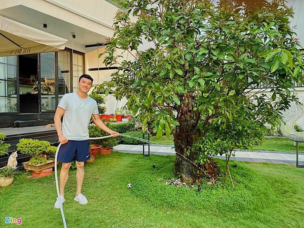 Quốc Trường chăm sóc vườn cây cổ thụ trong biệt thự 700 m2-4