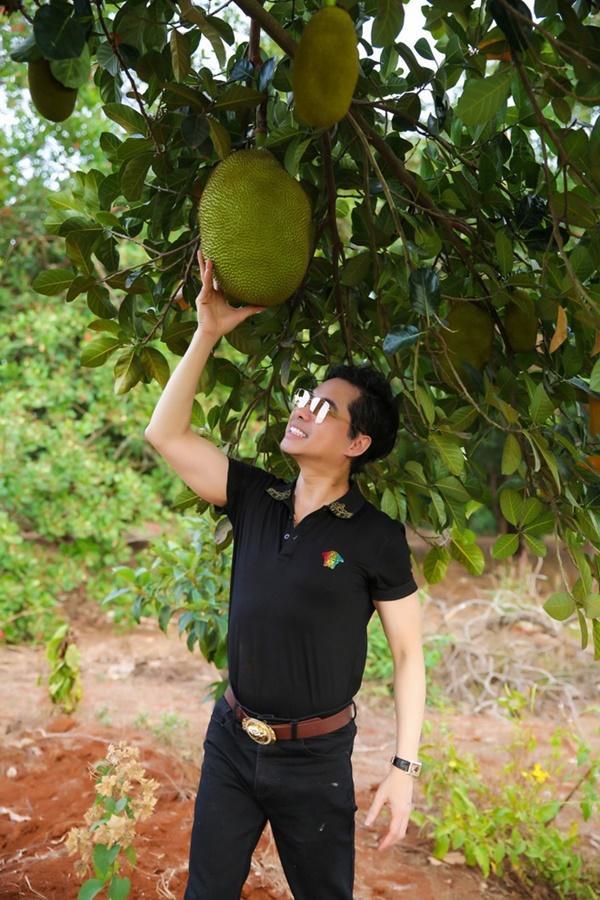 Quyền Linhvà nhiều sao Việt chăm vườn trái cây khi về quê-6