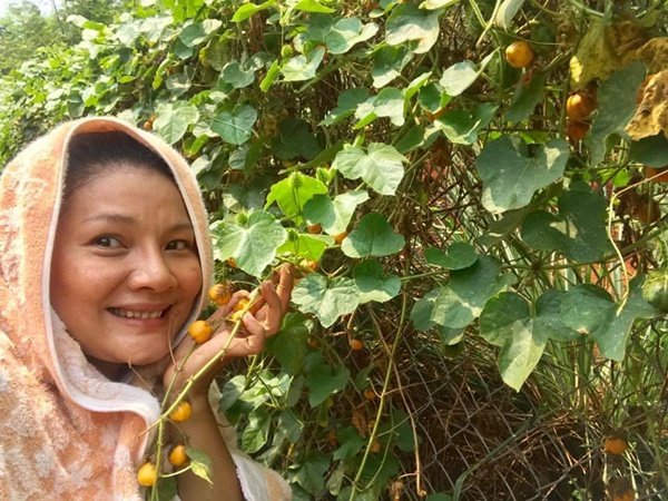 Quyền Linhvà nhiều sao Việt chăm vườn trái cây khi về quê-7