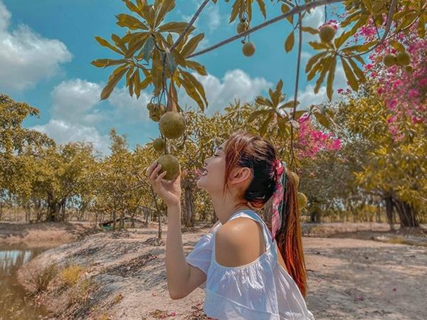 Quyền Linhvà nhiều sao Việt chăm vườn trái cây khi về quê-9