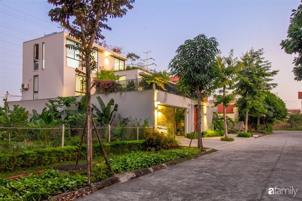 Ngôi nhà 3 tầng lấy cảm hứng từ ruộng bậc thang giúp từng góc nhỏ gần hơn với thiên nhiên ở Ninh Bình-1