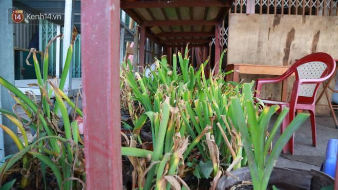 Cảnh tượng chưa từng có ở chợ hoa lớn nhất Hà Nội mùa Covid -19-10