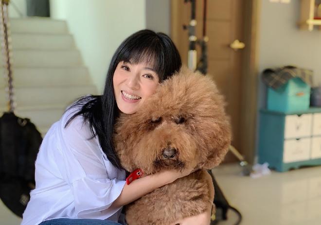 Chúc Anh Đài xinh đẹp nức tiếng: Vỡ nợ khi từ bỏ showbiz theo bạn trai, giờ ra sao ở tuổi U50?-16