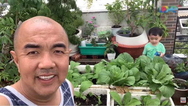 Sao Việt khoe vườn: NSND Hồng Vân nuôi gà, Quốc Thuận có nhà xum xuê cây-6