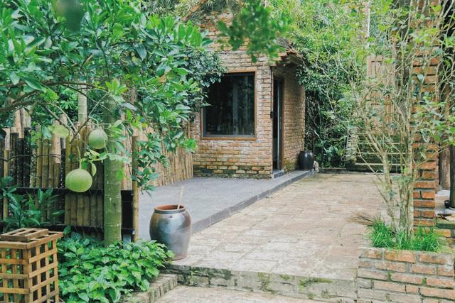 Ngôi nhà trong mơ trên đỉnh núi gần Hà Nội: Cá đầy ao, vườn đầy hoa trái-3