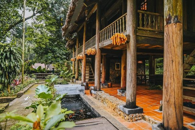 Ngôi nhà trong mơ trên đỉnh núi gần Hà Nội: Cá đầy ao, vườn đầy hoa trái-6