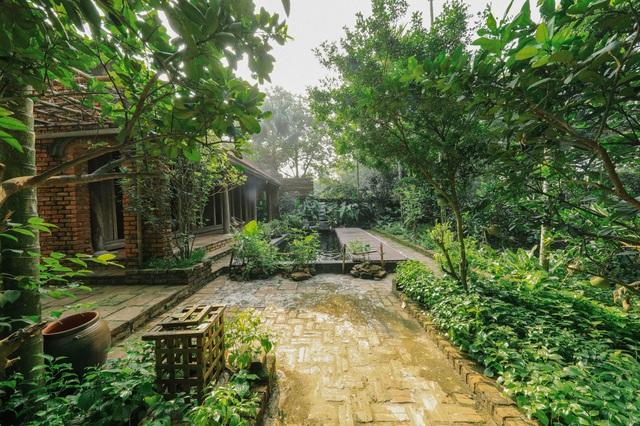 Ngôi nhà trong mơ trên đỉnh núi gần Hà Nội: Cá đầy ao, vườn đầy hoa trái-13