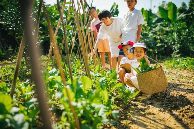 Ngôi nhà trong mơ trên đỉnh núi gần Hà Nội: Cá đầy ao, vườn đầy hoa trái-17