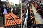 Chất lượng thật bên trong miếng thịt lợn nhập khẩu Nga sau khi rã đông?-8