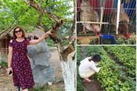 Nhờ tính toán thuê đất trồng rau, nuôi gà trên sân thượng mà mẹ đảm Hà Nội một tháng đi chợ 2 lần, tiền chợ tiêu không quá 1,5 triệu đồng/tháng cho gia đình 5 người