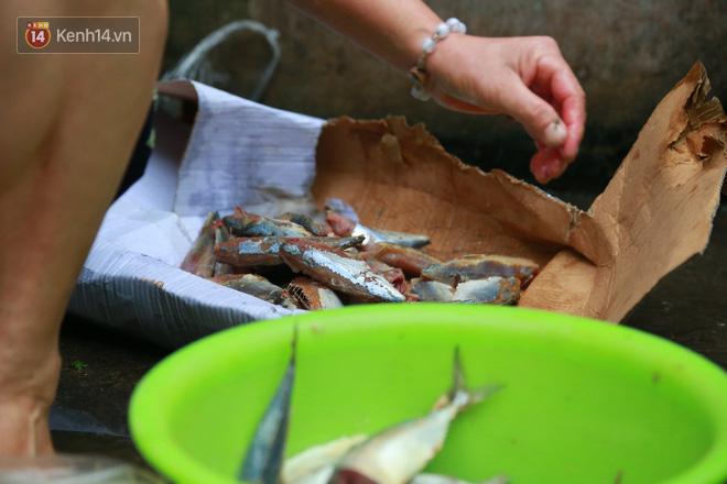 Nỗi niềm của những người lao động nghèo chơi vơi giữa Hà Nội vì đại dịch Covid-19: Sống nhờ gạo cứu trợ, cá ươn đi xin-11
