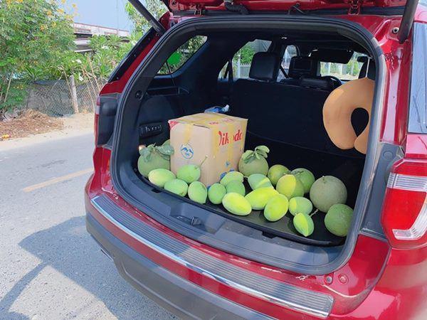 Đã mắt với vườn xoài 150 gốc của ca sĩ Minh Chuyên tại Nha Trang, đều tăm tắp 1kg/quả-6