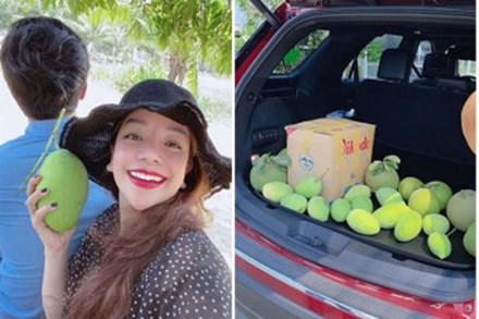 Đã mắt với vườn xoài 150 gốc của ca sĩ Minh Chuyên tại Nha Trang, đều tăm tắp 1kg/quả