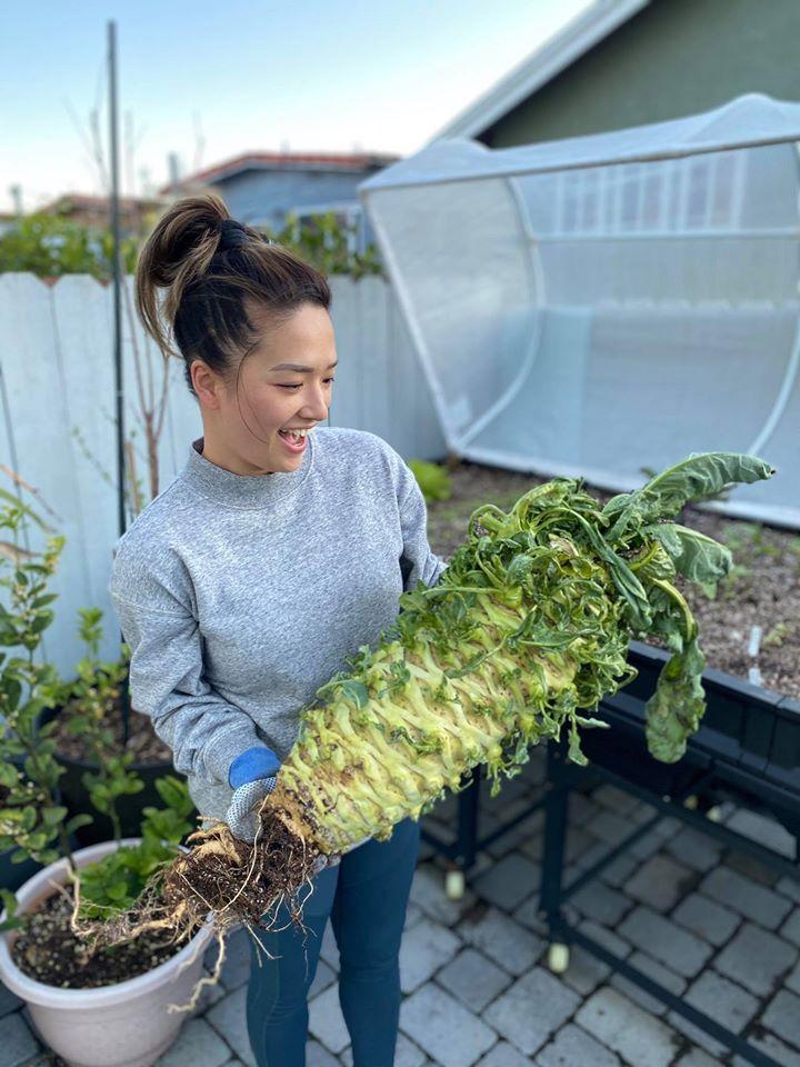 Tận dụng mảnh sân bê tông, cô gái thu hoạch mỏi tay rau củ quả quanh năm nhờ phương pháp đơn giản không phải ai cũng biết-2