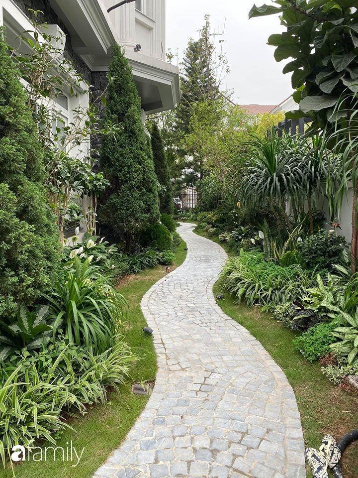 Người đàn ông đang sở hữu góc vườn đẹp hút hồn ở Hà Nội chia sẻ kinh nghiệm trồng cây để có khu vườn đẹp như châu Âu-1