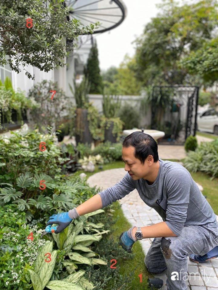 Người đàn ông đang sở hữu góc vườn đẹp hút hồn ở Hà Nội chia sẻ kinh nghiệm trồng cây để có khu vườn đẹp như châu Âu-5