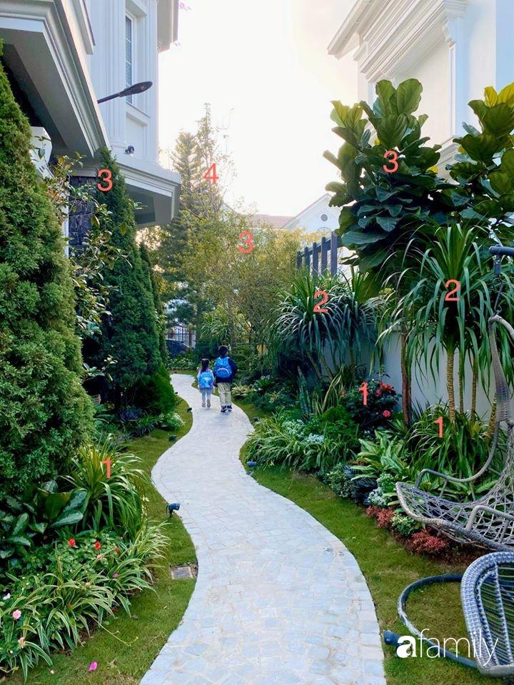 Người đàn ông đang sở hữu góc vườn đẹp hút hồn ở Hà Nội chia sẻ kinh nghiệm trồng cây để có khu vườn đẹp như châu Âu-9