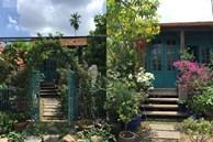 'Ngó' căn nhà sàn 28m² tự làm giữa Sài Gòn tấp nập vẫn ngập tràn ánh nắng, toàn màu xanh cỏ cây ngoài hiên nhà với chi phí chưa đến 100 triệu đồng