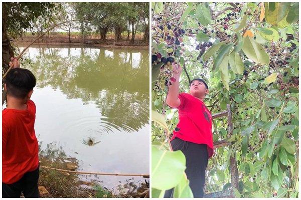 Nghỉ dịch dài ngày, Lê Phương dẫn cả gia đình về Tây Ninh trồng cây, hái quả-9