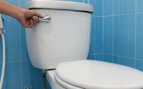 Nhà vệ sinh một tuần vẫn thơm tho nhờ mẹo nhỏ ít người biết-1