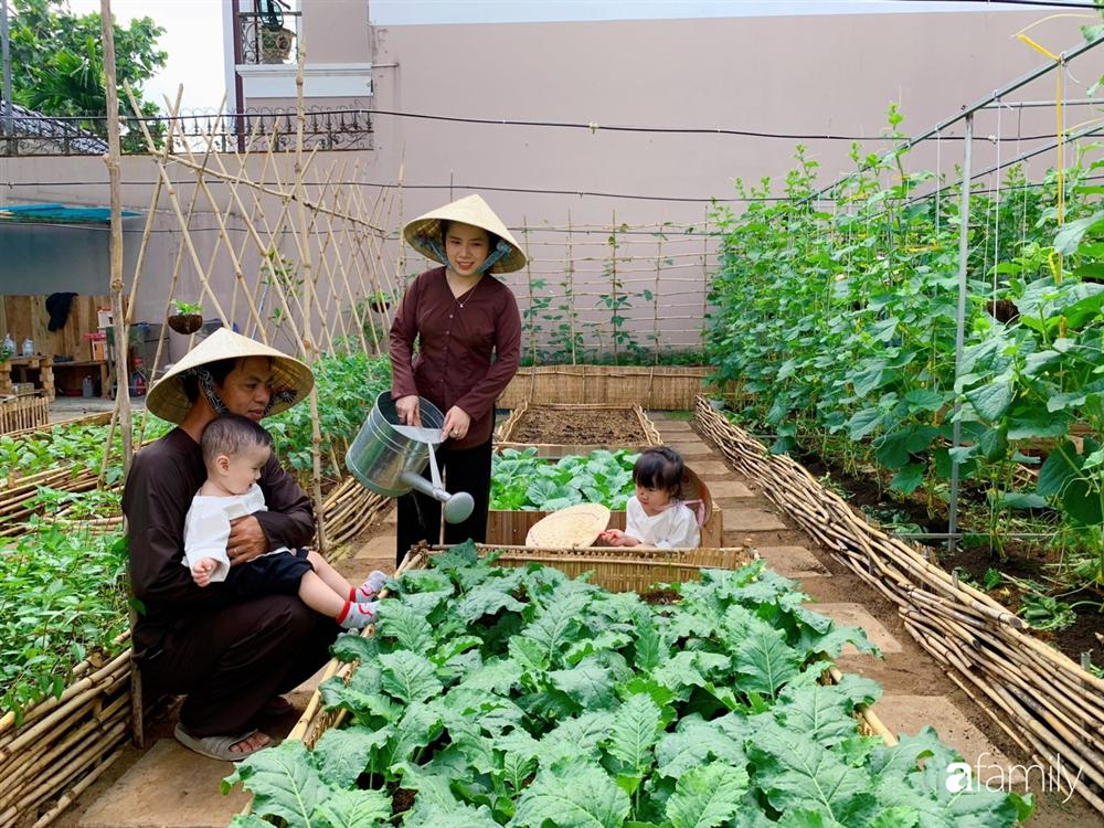 Nghỉ dịch ở nhà, gia đình trẻ gắn kết yêu thương bằng cách cải tạo vườn rau xanh tốt giữa lòng Sài Gòn-1