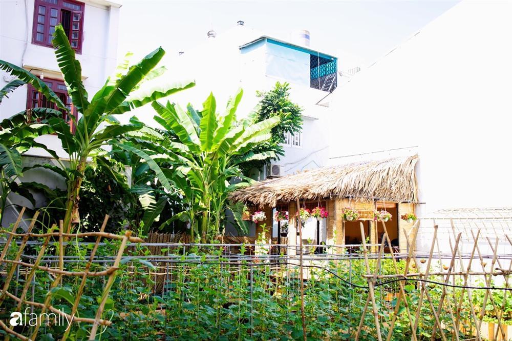 Nghỉ dịch ở nhà, gia đình trẻ gắn kết yêu thương bằng cách cải tạo vườn rau xanh tốt giữa lòng Sài Gòn-13