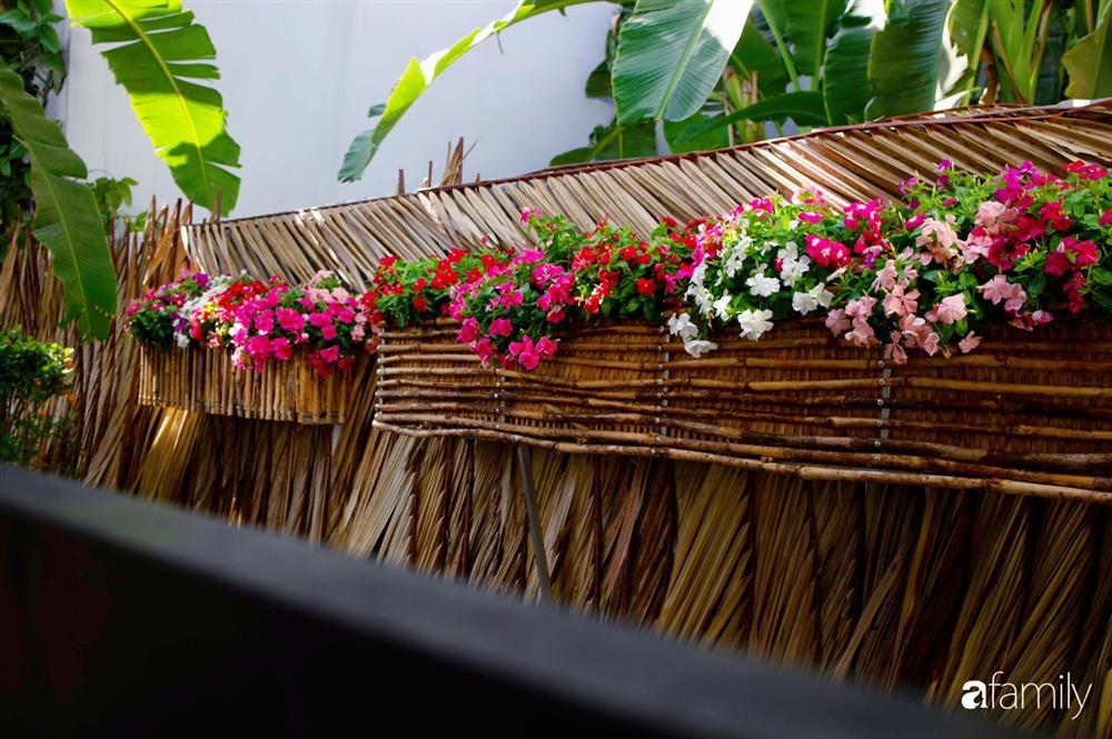 Nghỉ dịch ở nhà, gia đình trẻ gắn kết yêu thương bằng cách cải tạo vườn rau xanh tốt giữa lòng Sài Gòn-18