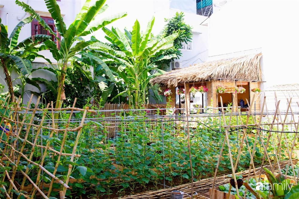 Nghỉ dịch ở nhà, gia đình trẻ gắn kết yêu thương bằng cách cải tạo vườn rau xanh tốt giữa lòng Sài Gòn-30