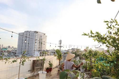 Những vườn hồng trăm triệu trong nhà sao: Hà Tăng, Quyền Linh, Khánh Thi... ai đỉnh hơn?-2