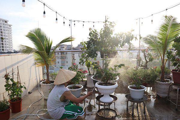 Những vườn hồng trăm triệu trong nhà sao: Hà Tăng, Quyền Linh, Khánh Thi... ai đỉnh hơn?-3