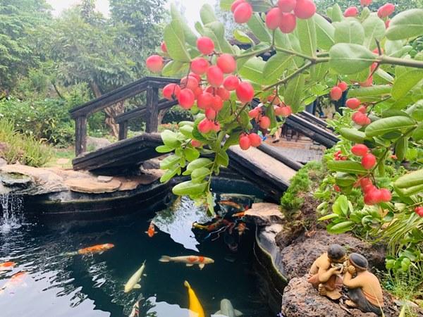 Nhà vườn như biệt phủ của diễn viên hài Hoàng Mập-9