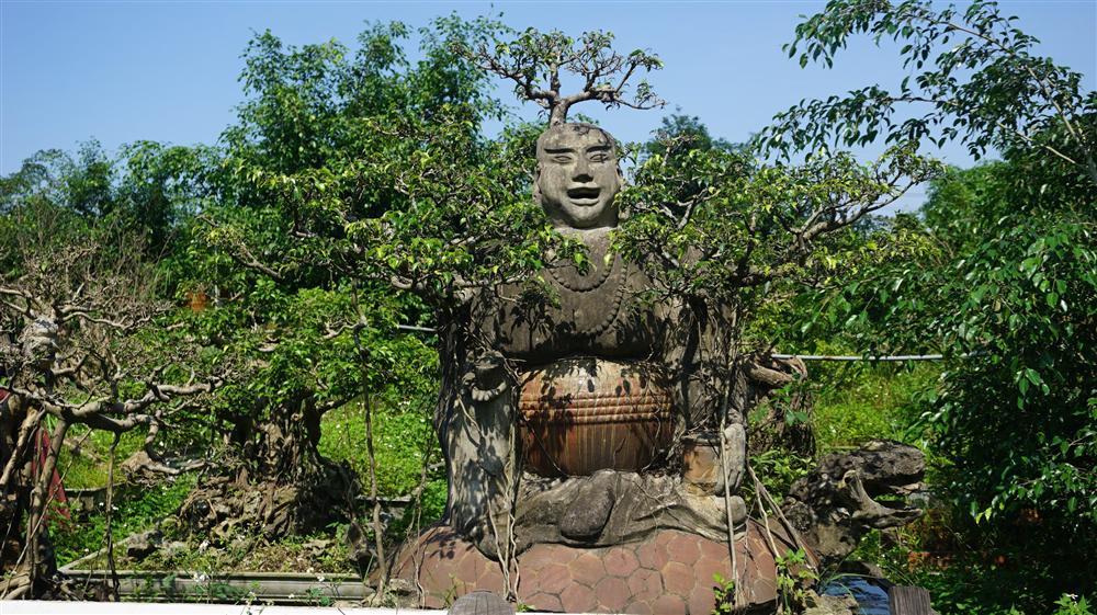 Khu vườn bỏ hoang toàn siêu cây bạc tỷ của đại gia nức tiếng một thời-14