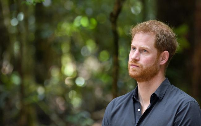 Harry lần đầu thừa nhận cuộc sống hoàn toàn bị đảo lộn sau khi rời hoàng gia nhưng không trách Meghan Markle-2