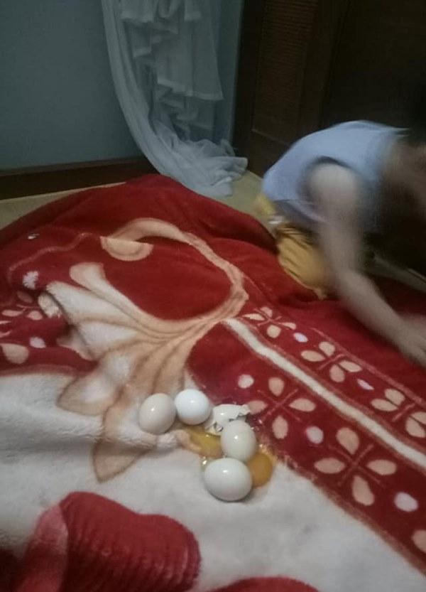 """Đang trông con bỗng linh cảm điều bất thường, bà mẹ trẻ vội đi tìm thì bắt được cu cậu đang chơi trò ấp trứng, kết quả sau đó khiến mẹ phát điên""""-1"""